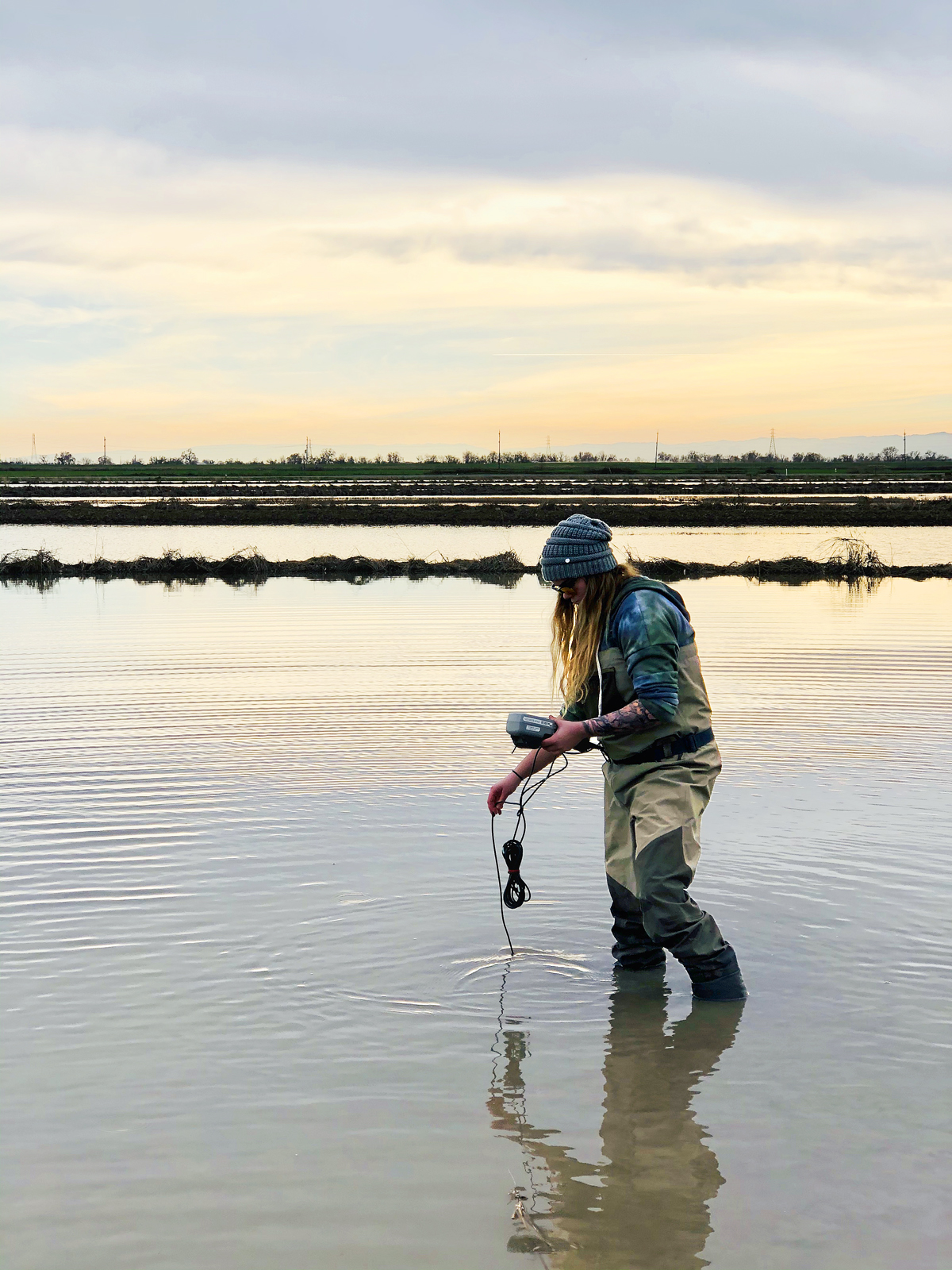 Member of the UC Davis team measuring critical biological water quality parameters.