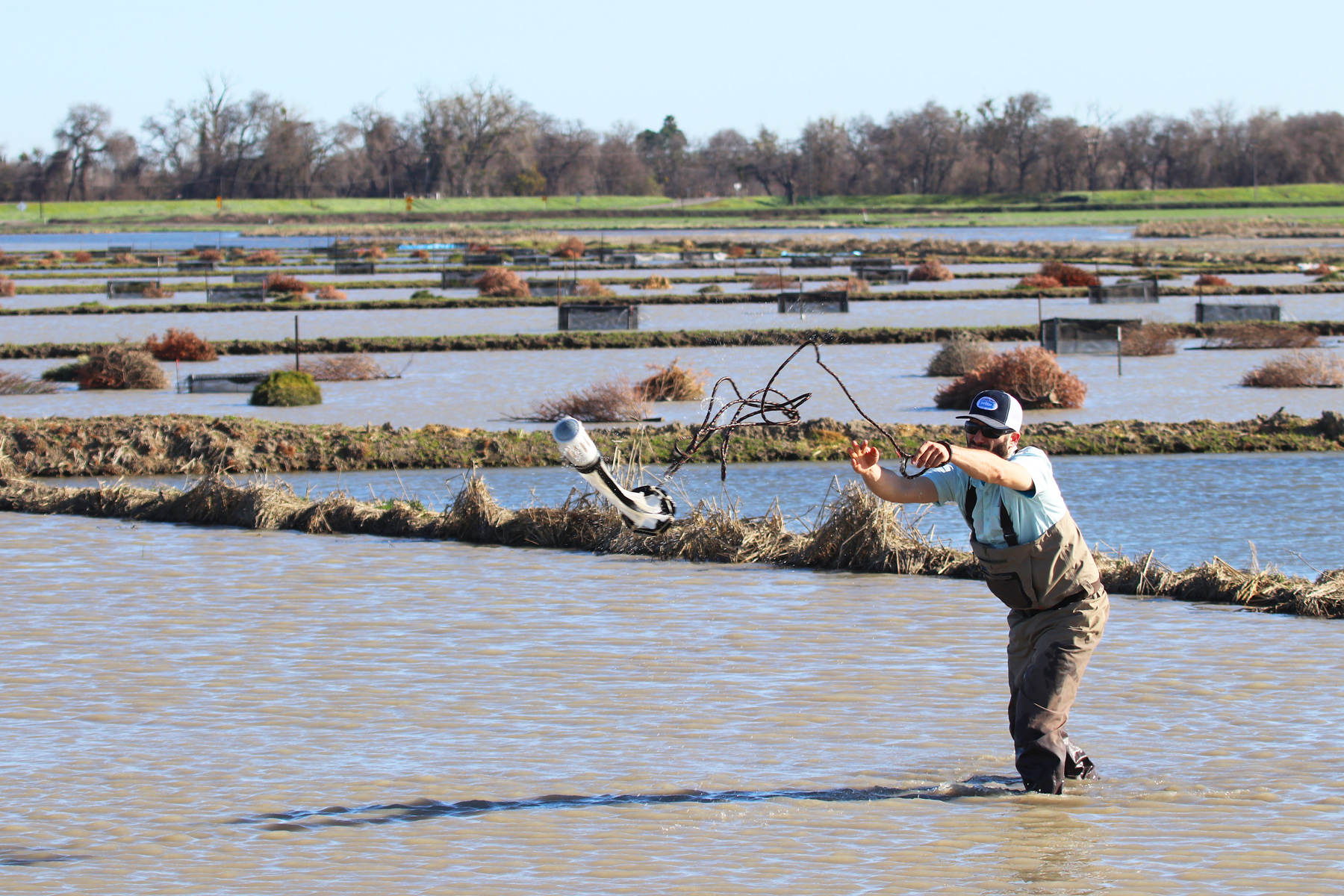 Jacob Montgomery, Project Manager for California Trout, tossing out a zooplankton net
